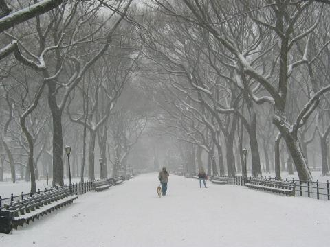 nyc-winter